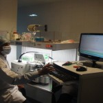 Semen Processing Lab 2